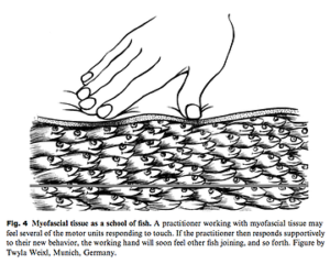 マッサージによる神経への影響