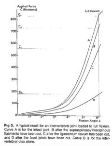 体幹部の最大可動域と負荷