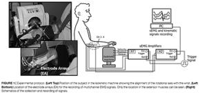 手首のグリップ時の筋電図の計測