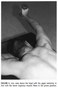 挙上動作による僧帽筋下部のエクササイズ
