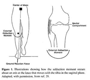 歩行時の膝の内転トルク