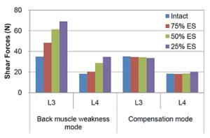 筋力と腰椎への負荷の関係性