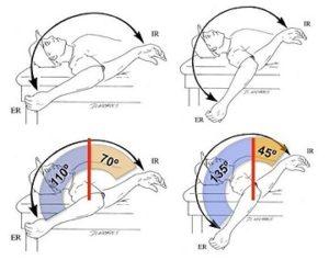 肩の外旋の可動域の適応