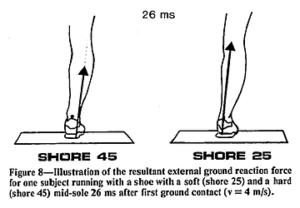 足首のプロネーションと床反力