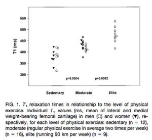 運動量と軟骨の状態の関係性