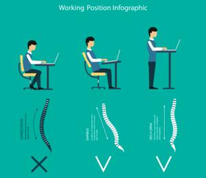 座位と立位姿勢における脊柱のアライメント